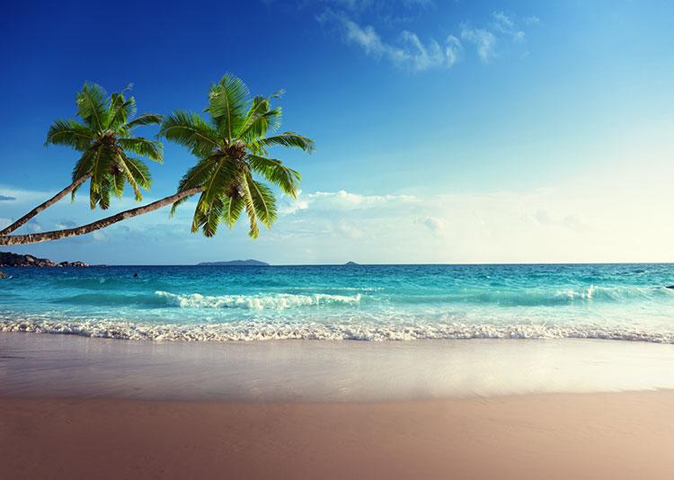 首页 02>02 最新素材 02>02 椰树海景沙滩简约背景墙装饰画